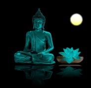 buddha-709861_640