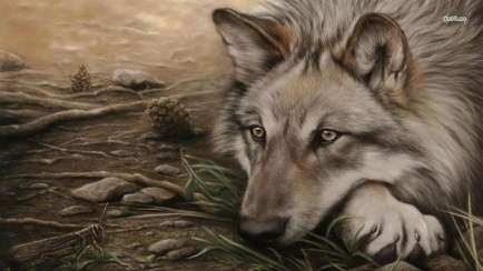 wolf traurig